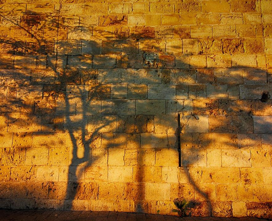 shadow-1779436_960_720.jpg
